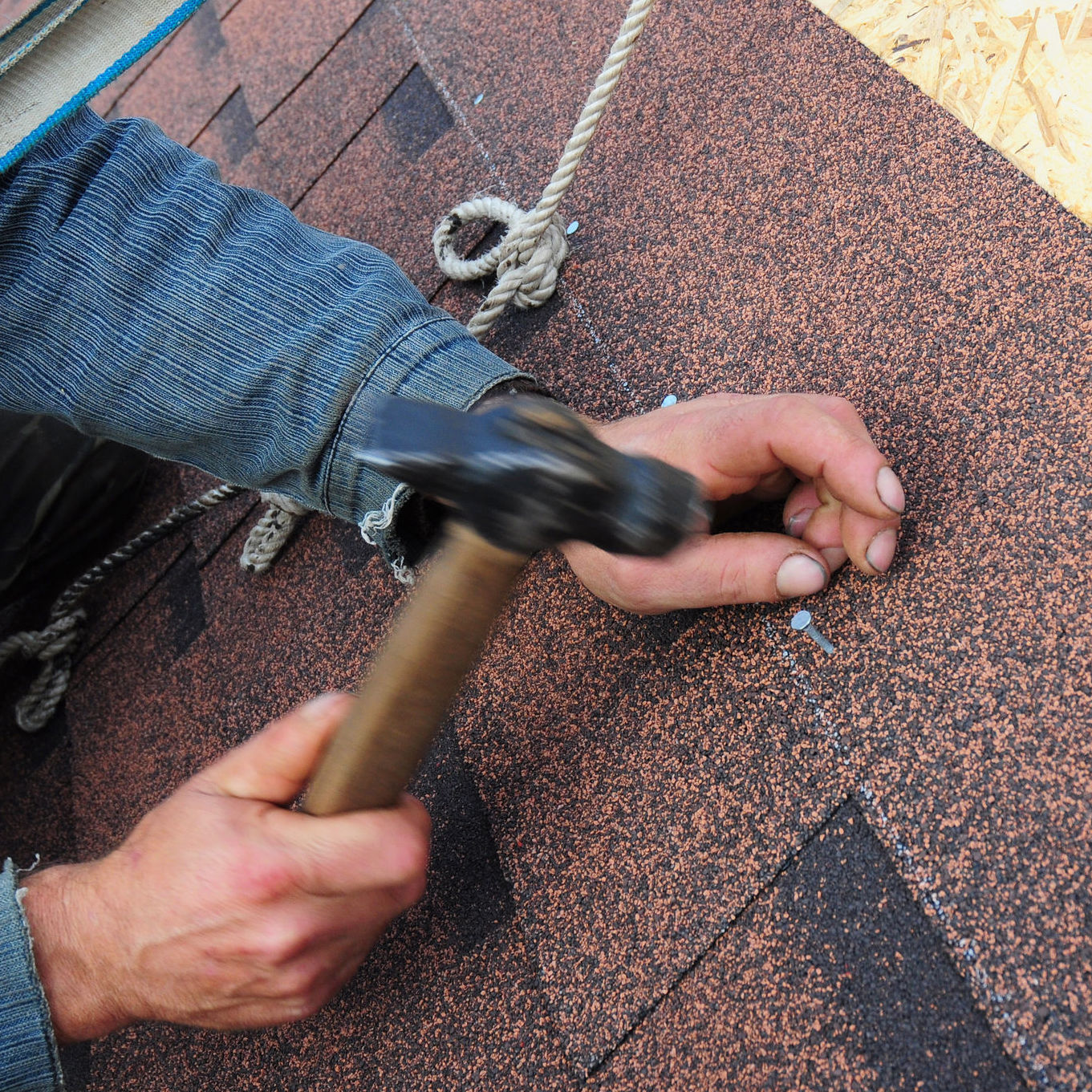 Roof repair company taking care of roof